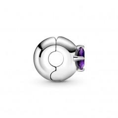 799204C02 - Clip en plata...