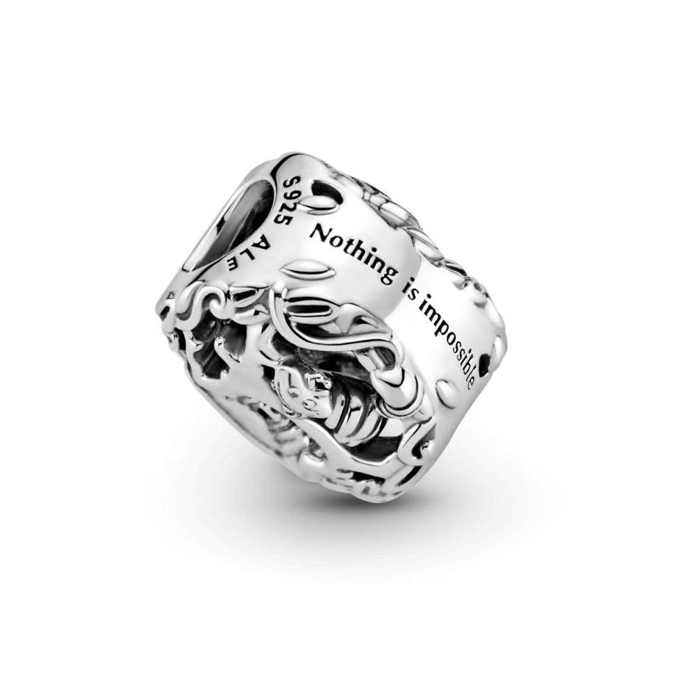 799361C00 - Charm Pandora de plata...
