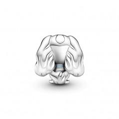 799386C01 - Charm Pandora...