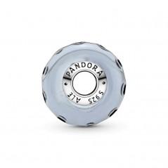 798938C00 - Charm Pandora...