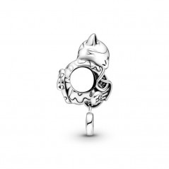 799535C00 - Charm Pandora...