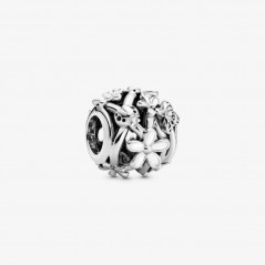 798772C01 - Charm Pandora...